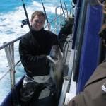 gule-rev-fiskeri